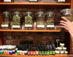 Indospace Allows Cannabis Merchants to Accept Bitcoin Effortlessly