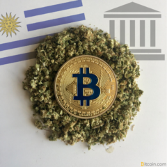 Uruguay National Bank Urged to Provide Services to Cannabusiness – Or Bitcoin Will