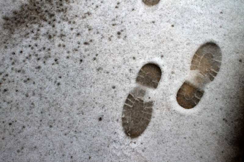 Footprints in the snow.