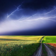 Business Owner's Seething Critique of the Lightning Network Goes Viral
