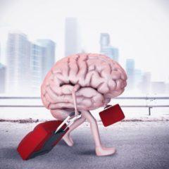 U.S. Regulators Risk Causing a Brain Drain to Friendlier Crypto Climes
