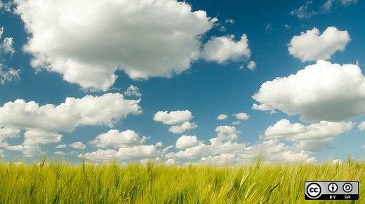 Sky with clouds and grass