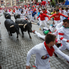 More On-Ramps, Liquidity, Options: Why Bitcoin's Next Bull Run Will Be Different