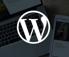 WordPress DMCA Takedown Notices Drop But Abuse Remains Prevalent