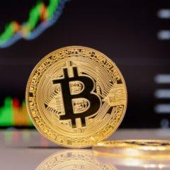 Average Price of Bitcoin More Than Quadrupled Between Reward Halvings