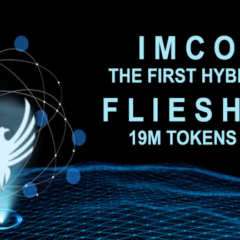 IMCoin (IMC) Flies High