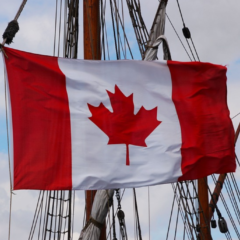 Appeals Court Revives Canadian Reverse Class Action Against BitTorrent Pirates